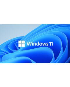 MS Windows 11 Professional  64-Bit  DSP